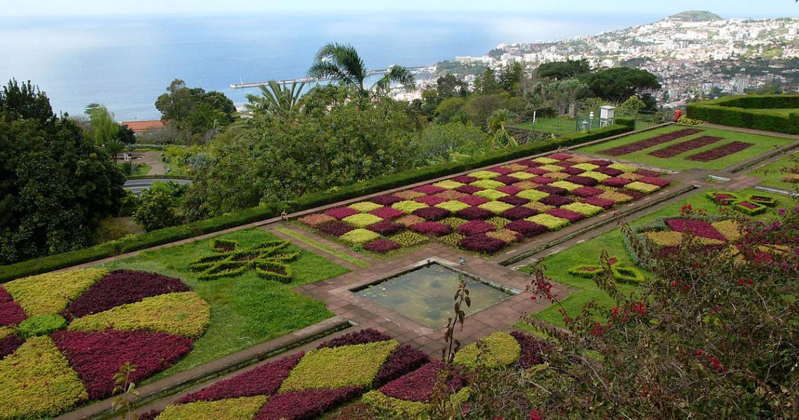 Botaniska trädgården i Funchal på Madeira